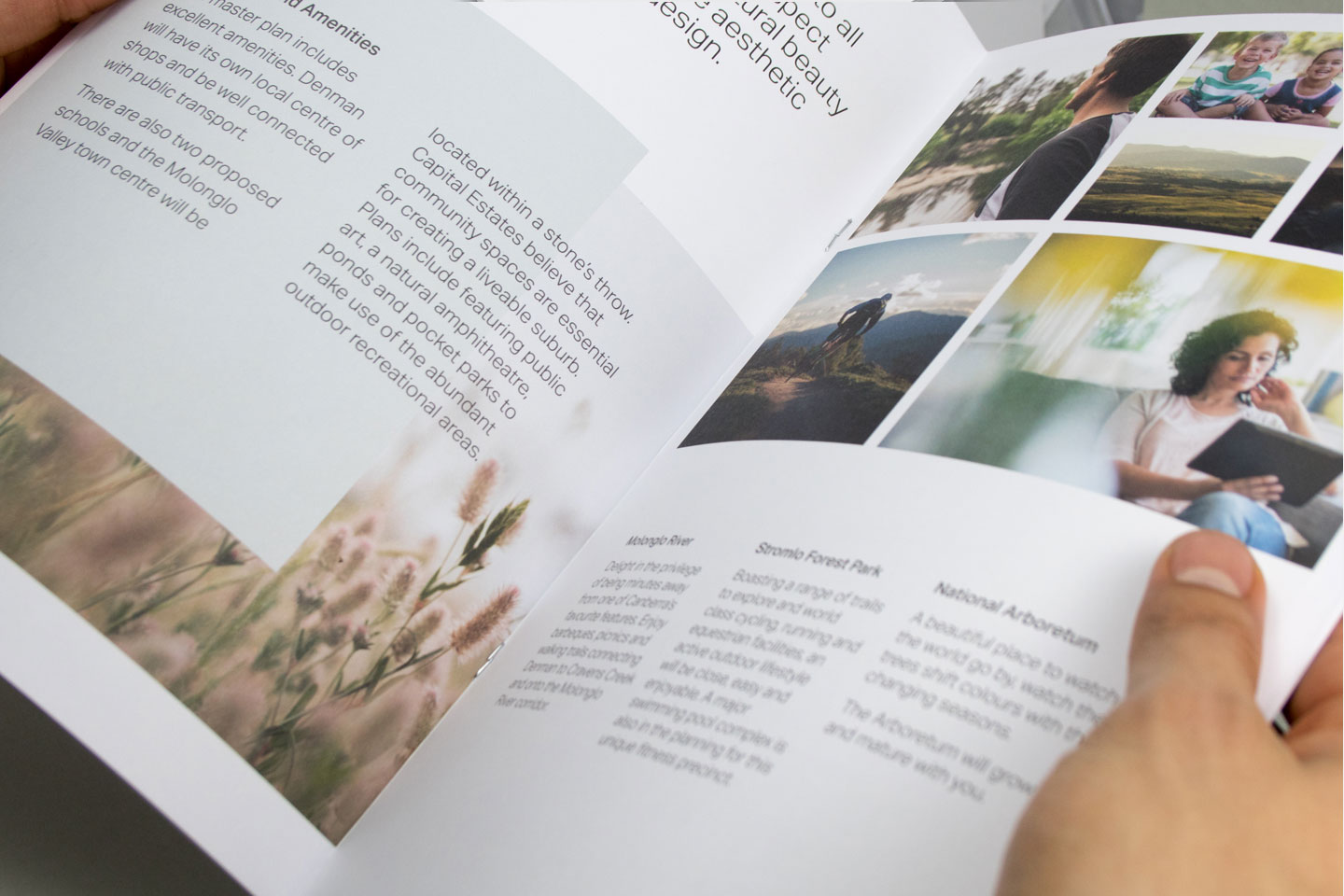 Internal spreads for brochure design