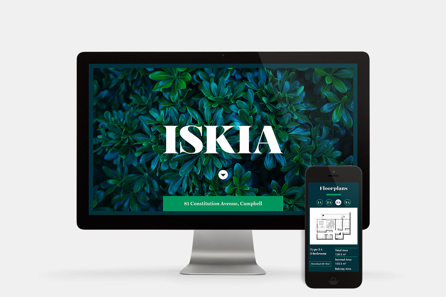 Responsive website design for Iskia